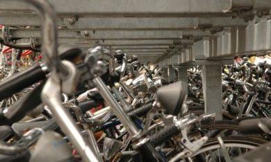 Paneluitvraag Mobiliteit – Oordeel gemeentelijke inzet op mobiliteit 2014