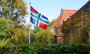 Groningse vlag in de tuin bij een bewoner